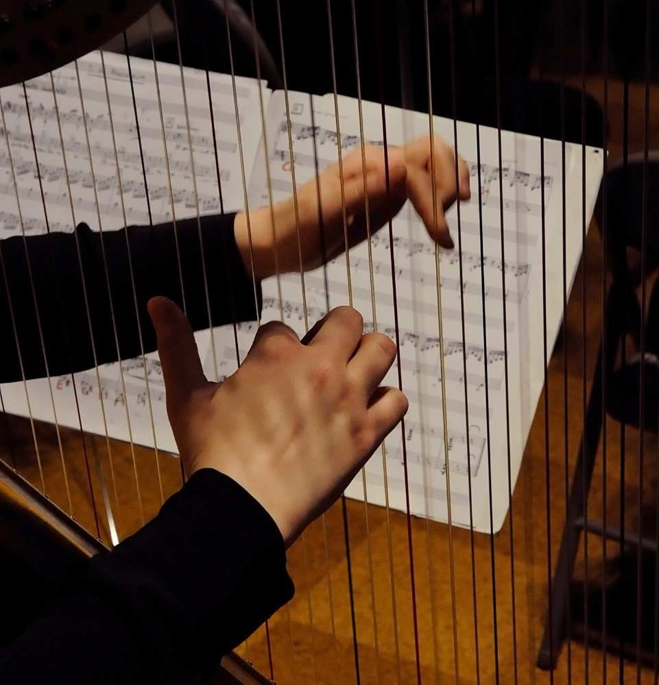 Brahms Requiem March 2015 concert photo